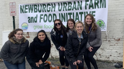 Students volunteering at the Newburgh Urban Farm and Food Initiative